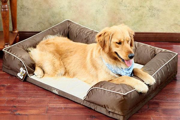 Como fabricar camas para perros cama para gatos y perros - Como hacer una cama para perro ...