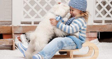 mejores razas de perro para niños